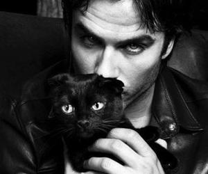 ian somerhalder, cat, and damon salvatore image