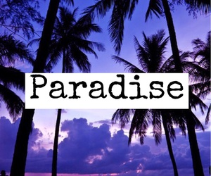 paradise, purple, and palms image