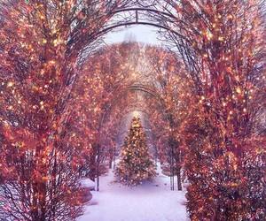 christmas tree, merry christmas, and xmas image