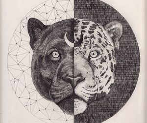 leopard, sacred geometry, and art image