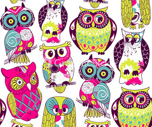 owl, blue, and green image