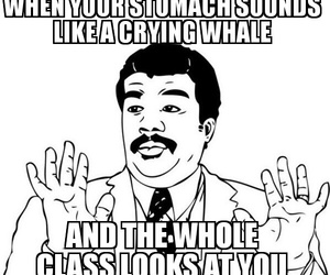 class, food, and funny image