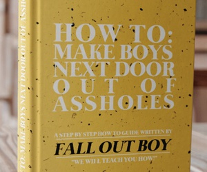 asshole, boys, and fall out boy image