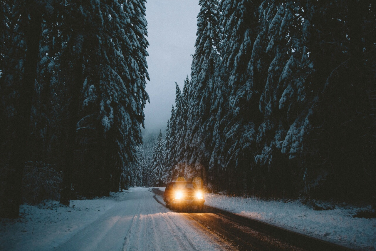 cold and winter image