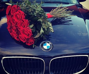 bmw, rose, and love image
