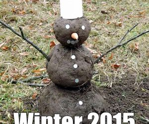 funny and winter image