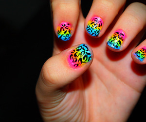 nails, colorful, and animal print image