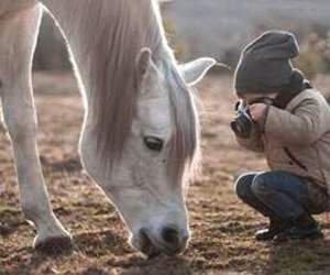 horse, baby, and love image