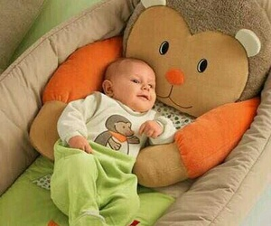 animals, baby, and clothes image