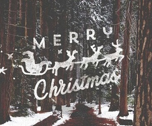 landscape, merry christmas, and nature image