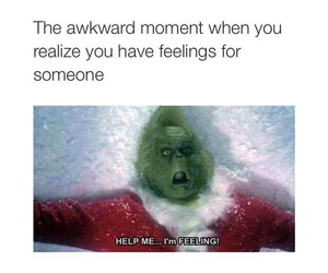 feelings, funny, and grinch image