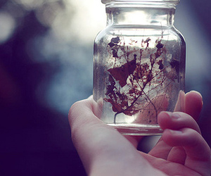 hand, jar, and leaves image