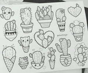 drawing and plant image