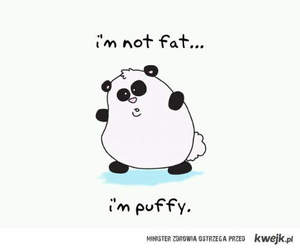 panda, puffy, and cute image