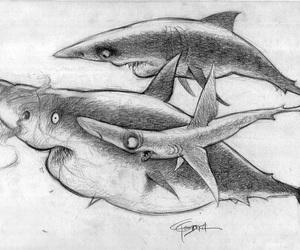 animal, disney, and illustration image