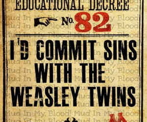 weasley twins and harry potter image