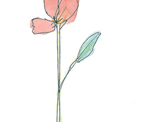cute, draw, and flower image
