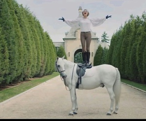 Taylor Swift, blank space, and horse image