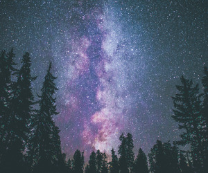 art, stars, and trees image