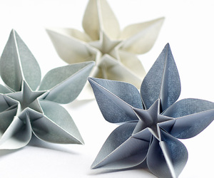 origami, origami flower, and flowers image