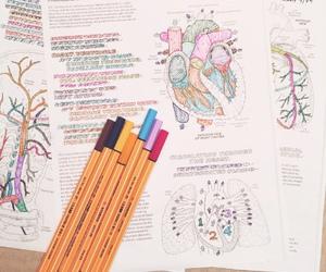 colors, desktop, and school image