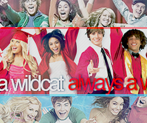 high school musical, wildcats, and childhood image