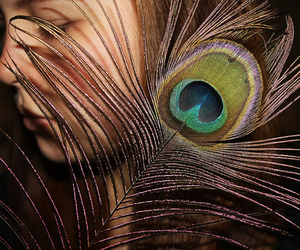 feather, girl, and peacock image