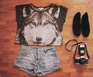 fashion, wolf, and camera image