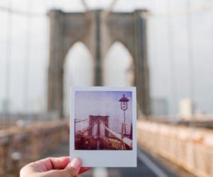 bridge, photography, and photo image