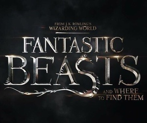 harry potter, fantastic beasts, and 2016 image