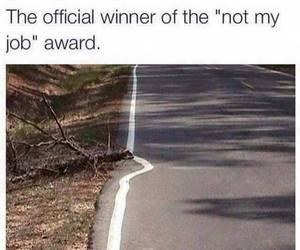 funny, lol, and award image