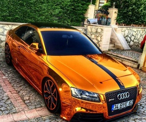 audi and gold image