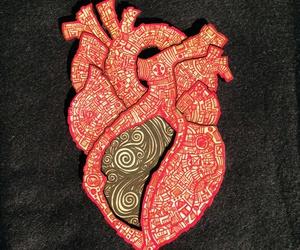 anatomical, anatomical heart, and anatomy image