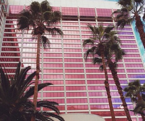 pink, palms, and building image