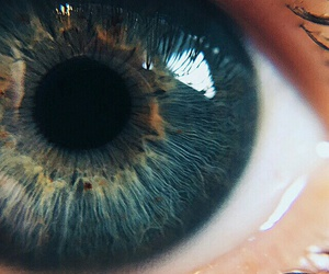 blue, close, and deep image