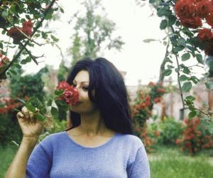 sophia loren, vintage, and beautiful image