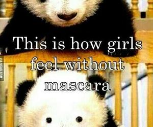 panda, girl, and mascara image