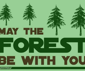 forest, star wars, and greenpeace image