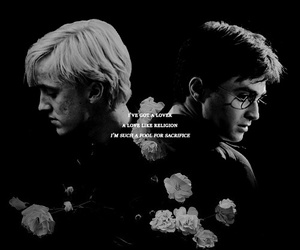 harry potter, hp, and drarry image