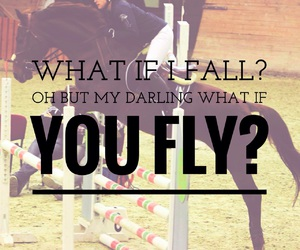 fall, fly, and horse image