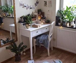 room, plants, and home image