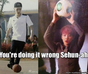 exo, funny, and sehun image
