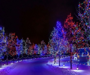 beautiful, christmas lights, and lovely image