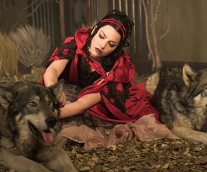 amy lee, evanescence, and wolf image