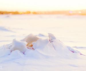 art, happy, and ice image