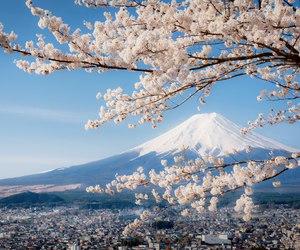 happy, japan, and nice image