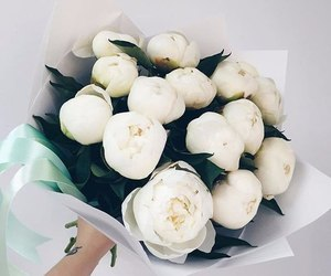 flowers, white, and peonies image