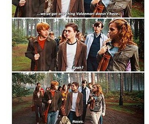 funny, noses, and harry potter image