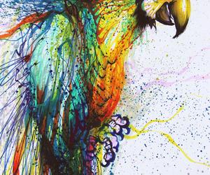 art, parrot, and bird image