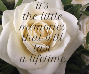 memories, quotes, and rose image